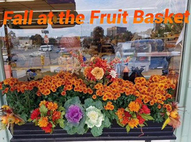 Fall at the Fruit Basket